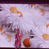 VI Межрегиональный фестиваль-конкурс самодеятельного народного творчества «Задонские осенины»