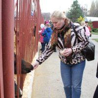 Экскурсия в Липецком зоопарке