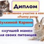 Итоги конкурса «Funny pets»